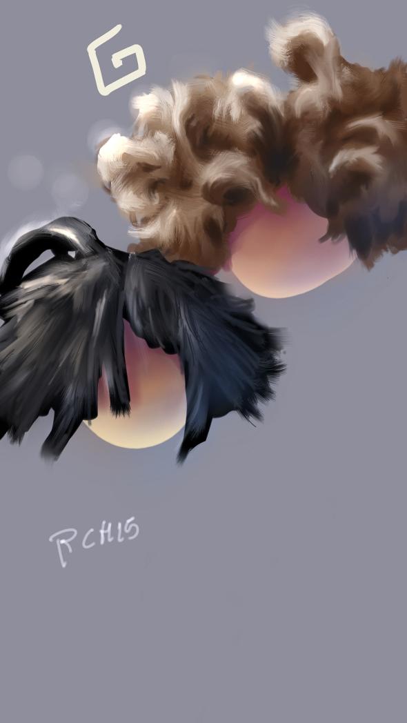 HairyBalls